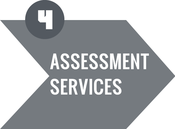 Assessment Arrow Hover