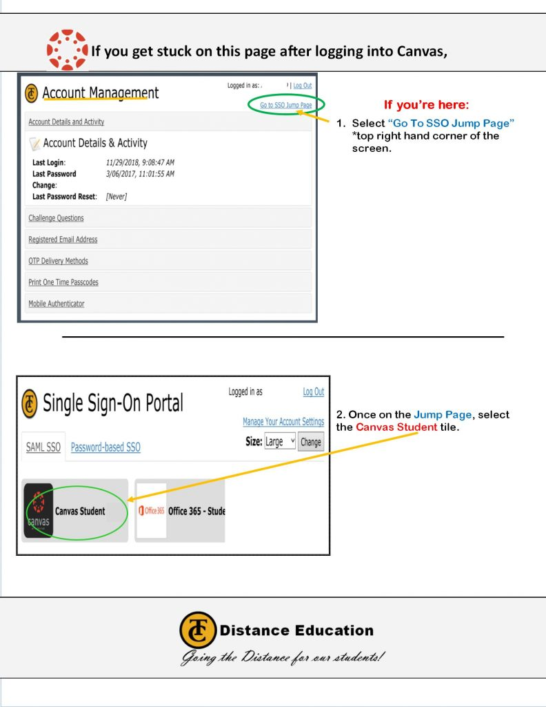 Decorative image of the SSO Jump Page Flyer- How to get to canvas from the Jump Page
